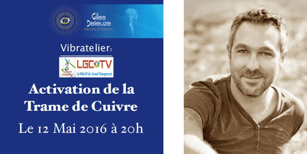 Activation-Trame-Cuivre-Gilles-Delieuze